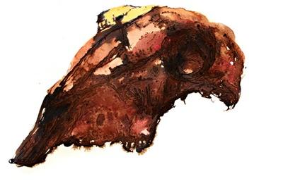 mouton2 Crânes