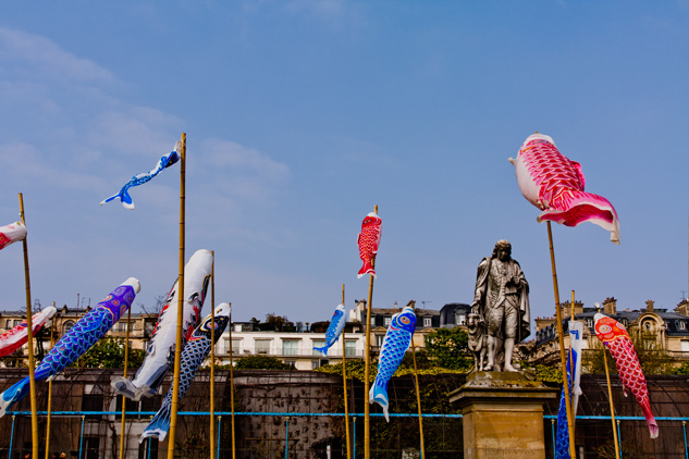 koinobori2
